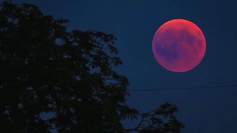 Karwa Chauth 2019 Moonrise Timings: चांद के दीदार के बाद ही पूरा होता है करवा चौथ का व्रत, जानें दिल्ली, मुंबई, चंडीगढ़, कानपुर समेत देश के अन्य शहरों में चंद्रोदय का सही समय