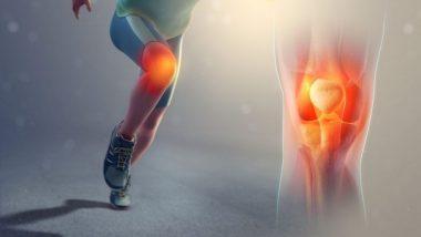 World Arthritis Day 2019: आर्थराइटिस के दर्द को बढ़ा सकते हैं ये आहार, जानें गठिया से पीड़ित लोग क्या खाएं और क्या नहीं