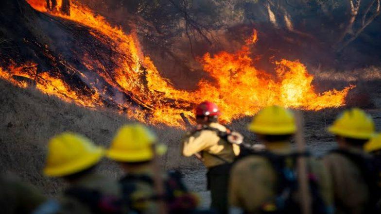 कैलिफोर्निया के जंगल में लगी भीषण आग, हजारों लोगों को निकाला गया