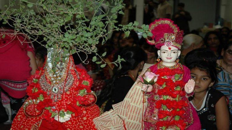 Tulsi Vivah 2019: जानें तुलसी विवाह का शुभ मुहूर्त और पूजा करने की विधि, सभी मनोकामना होंगी पूर्ण
