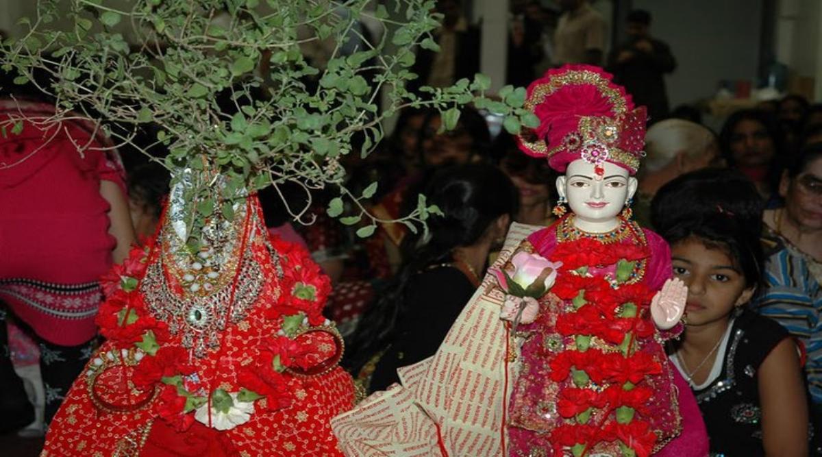 Tulsi Vivah 2019: अपने वैवाहिक जीवन को खुशहाल और सुखमय बनाने के लिए तुलसी विवाह के दिन करें ये काम
