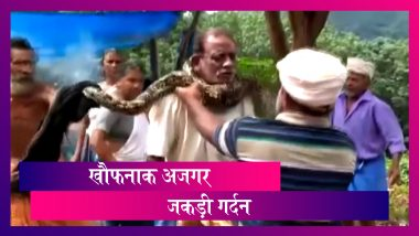 Kerala: अजगर ने जकड़ ली शख्स की गर्दन, लोगों ने बचाया, वीडियो वायरल