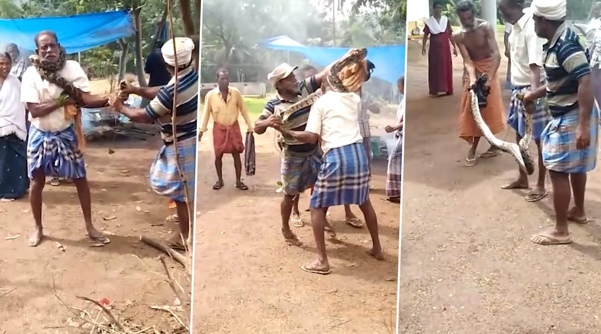 केरल: बुजुर्ग शख्स की गर्दन को 10 फिट के अजगर ने जकड़ा, उसके बाद जो हुआ.. देखें वायरल वीडियो