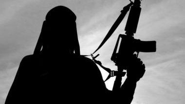 Jammu and Kashmir: श्रीनगर में आतंकियों ने पुलिस स्टेशन पर ग्रेनेड से किया हमला, छह सीआरपीएफ के जवान हुए घायल