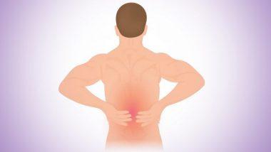 World Spine Day 2019: रीढ़ की हड्डी से जुड़े विकारों के प्रति जागरूकता का दिन है वर्ल्ड स्पाइन डे, जानिए इस बीमारी के कारण, लक्षण और बचाव के तरीके