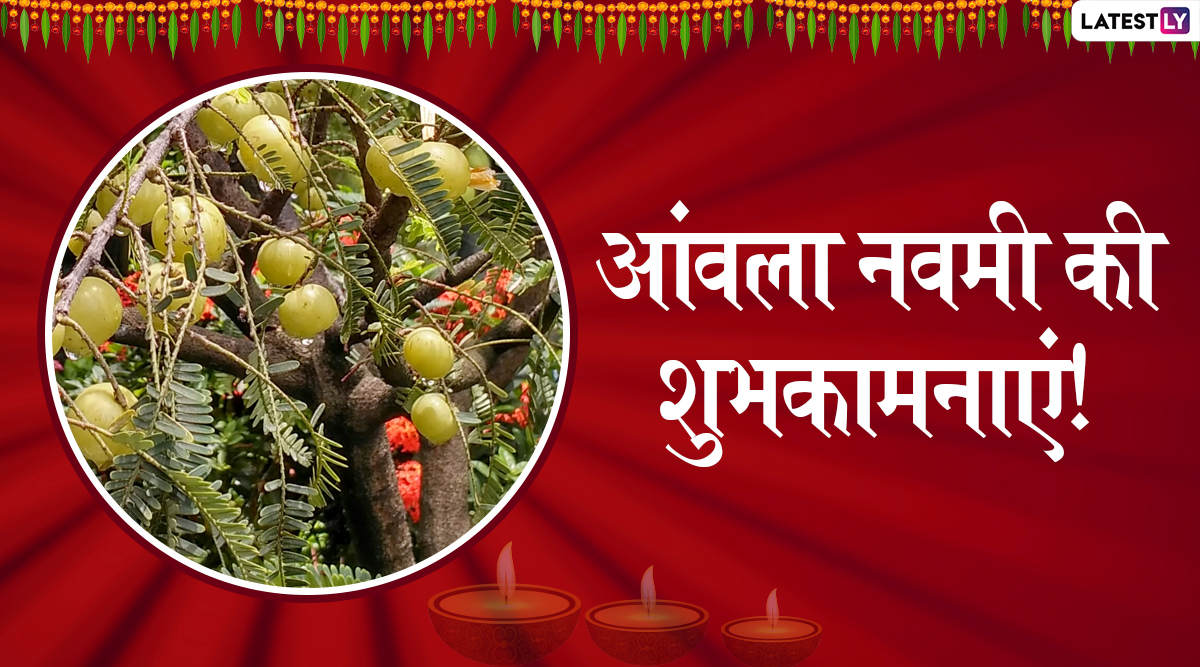 Amla Navami 2019 Wishes & Messages: आंवला नवमी के शुभ अवसर पर ये हिंदी WhatsApp Stickers, Facebook Greetings, SMS, GIF Images, Wallpapers भेजकर अपने प्रियजनों को दें शुभकामनाएं