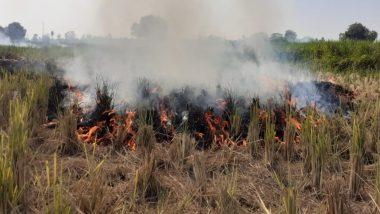 उत्तर प्रदेश: 10 दिनों में खेतों में पराली जलाने के आरोप में 10 किसान गिरफ्तार