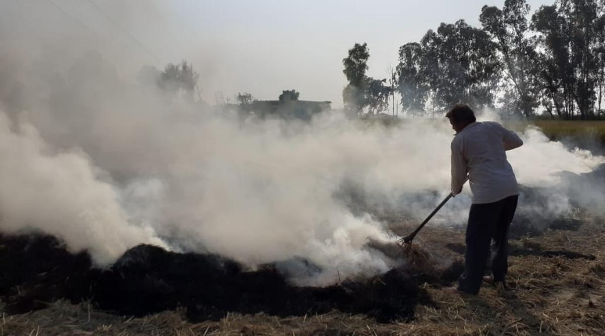 प्रतिबंध के बावजूद लगातार पराली जलाए जाने से दिल्ली की वायु गुणवत्ता 'गंभीर' श्रेणी में दर्ज