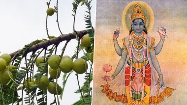 Amla Navami 2019: फलदायी है आंवला नवमी, जानें शुभ मुहूर्त और पूजा विधि