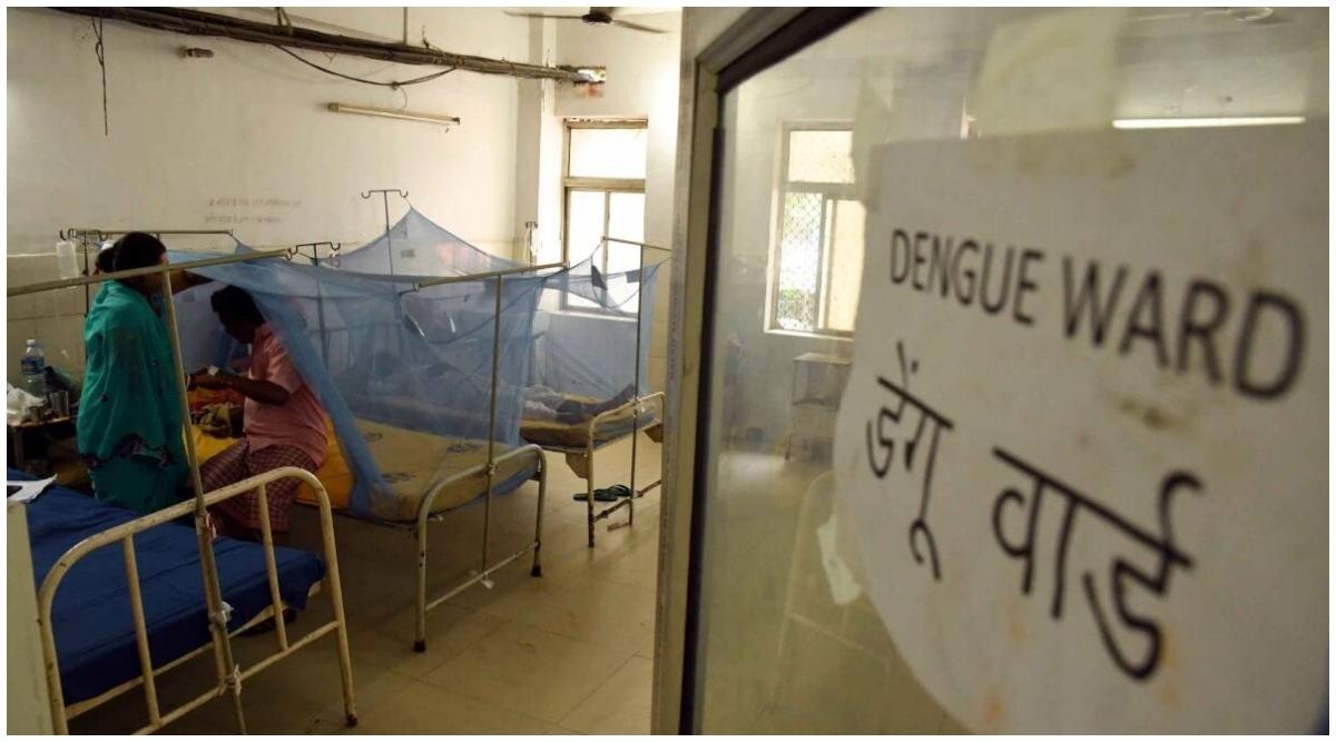 बिहार के मुजफ्फरपुर में डेंगू का प्रकोप, चपेट में आए 144 लोग