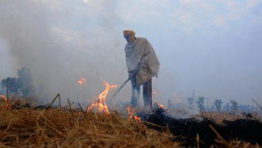 उत्तर प्रदेश में 300 किसानों पर पराली जलाने के लिए मामला दर्ज