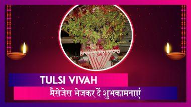 Tulsi Vivah 2019 Wishes: तुलसी विवाह के दिन ये हिंदी मैसेजेस भेजकर अपने करीबियों को दें शुभकामनाएं