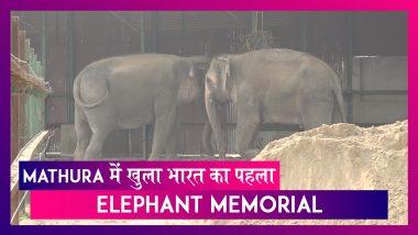 Mathura में बना भारत का पहला Elephant Memorial