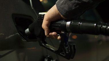 Petrol and Diesel Price 14th November: पेट्रोल की कीमत में आई उछाल, डीजल के दाम स्थिर, जानें अपने प्रमुख शहरों के रेट्स