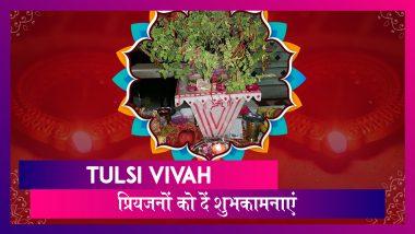 Tulsi Vivah 2019 Wishes: तुलसी विवाह पर ये हिंदी मैसेजेस भेजकर अपने प्रियजनों को दें शुभकामनाएं