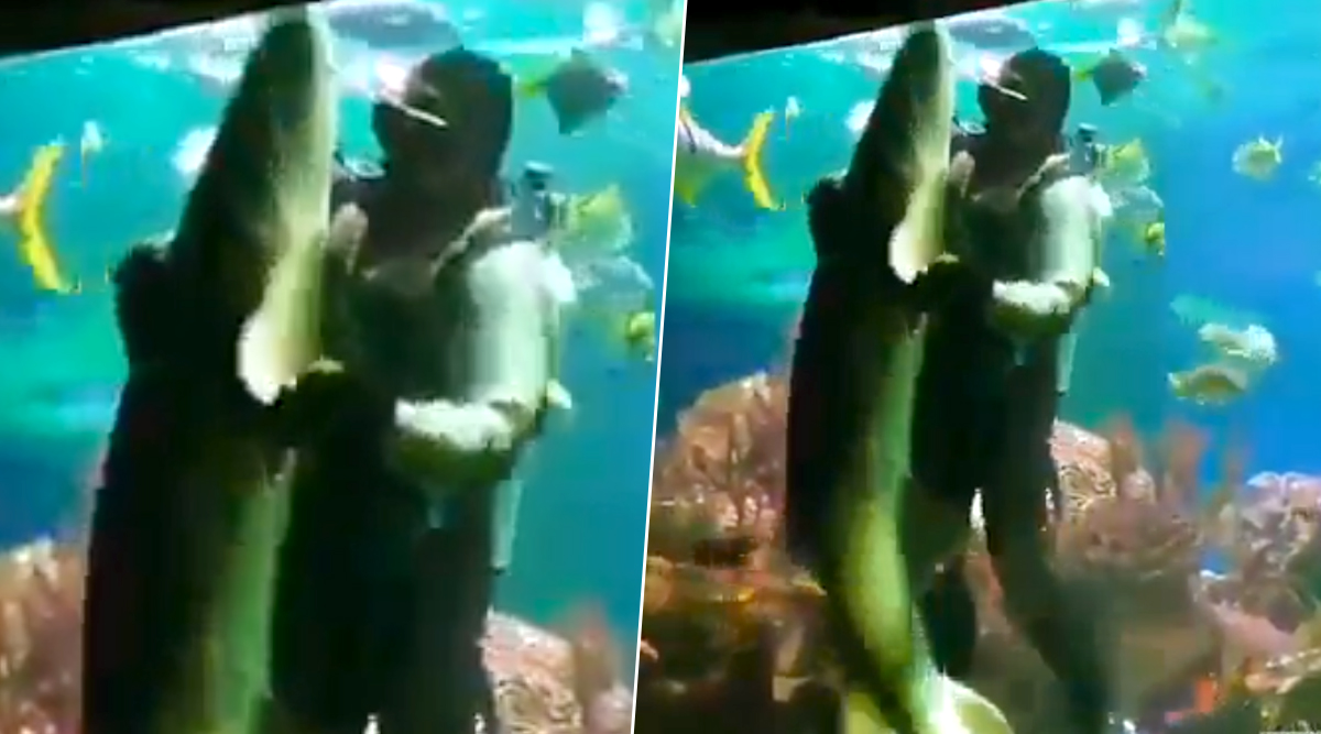 खूंखार शार्क के साथ एक शख्स ने किया गजब का डांस, शायद ही आपने देखा हो ऐसा VIDEO