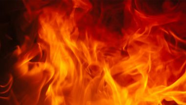 श्योपुर जिले के हुल्लपुर गांव में लगी भीषण आग, देखते ही देखते 20 घर जलकर हुए खाक