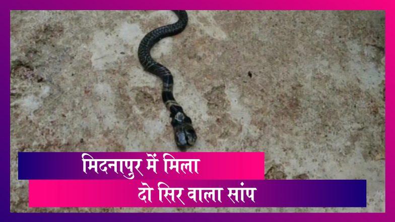 West Bengal: Midnapore में मिला दो सिर वाला सांप
