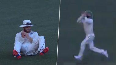 AUS vs NZ 1st Test Match 2019: पर्थ में केन विलियमसन ने मिचेल स्टार्क का पकड़ा शानदार कैच, देखें वीडियो