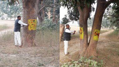 उत्तर प्रदेश: गोंडा में देवी-देवताओं के सहारे की जा रही है पेड़ों की रक्षा, चिपको आंदोलन के तहत किया गया पौधरोपण