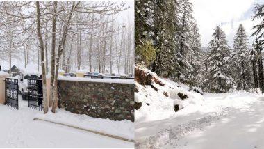 हिमाचल प्रदेश में साल के अंतिम दिन हो सकती है ताजा बर्फबारी, मौसम विभाग ने दी जानकरी