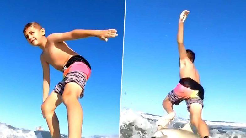 फ्लोरिडा: शार्क ने एक 7 साल के बच्चे के सर्फबोर्ड पर किया हमला, देखें वायरल वीडियो