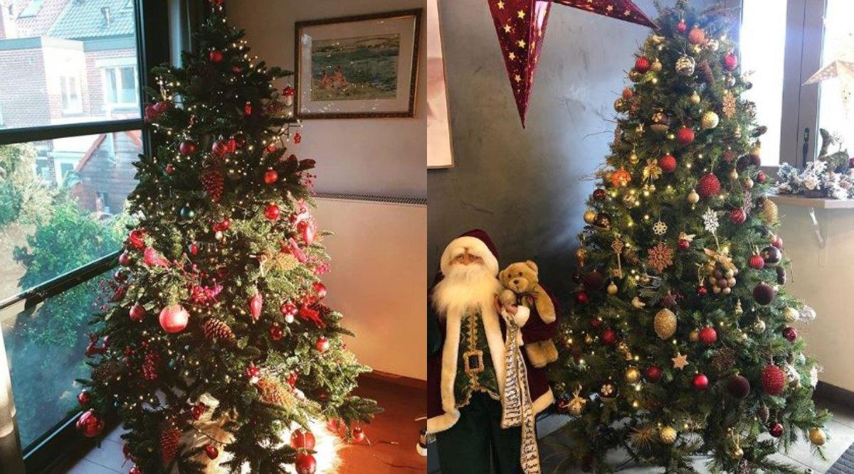 Christmas 2019: क्रिसमस ट्री के बिना क्यों अधूरा माना जाता है यह त्योहार, जानें इस वृक्ष का महत्व और इससे जुड़े रोचक तथ्य