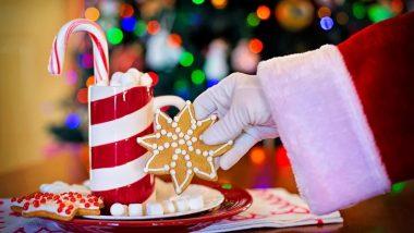 Christmas 2019: इस साल मनाएं इको-फ्रेंडली क्रिसमस, इस तरह करें पार्टी का आयोजन ताकि पर्यावरण को न पहुंचे नुकसान