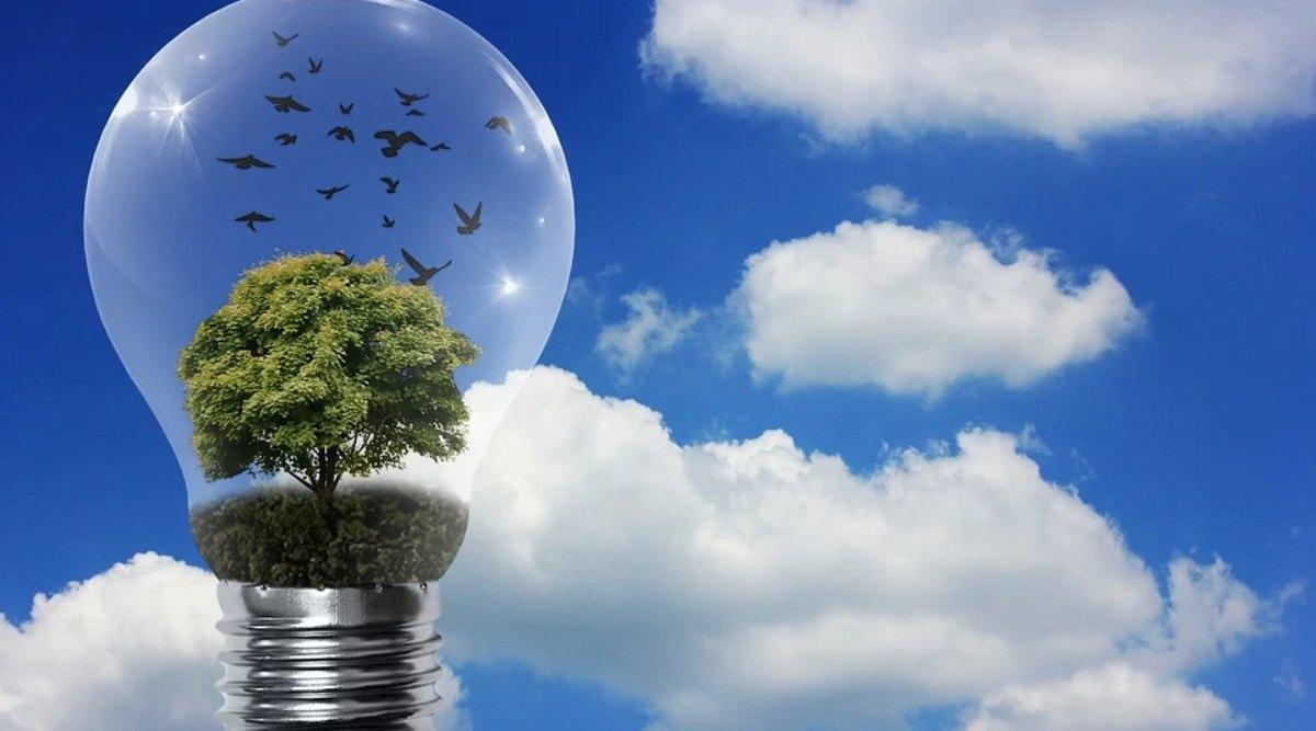 National Energy Conservation Day 2019: राष्ट्रीय ऊर्जा संरक्षण दिवस क्यों मनाया जाता है, जानें इसका इतिहास, महत्व और उद्देश्य
