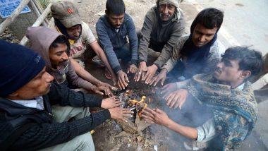 Winter Season 2019: पंजाब और हरियाणा में कड़ाके की ठंड, चंडीगढ़ में सबसे सर्द रात