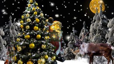 Christmas 2019: क्रिसमस के पर्व को मनाने के लिए खूबसूरती से सजाएं Xmas Tree, इन 5 डेकोरेशन आइडियाज की लें मदद