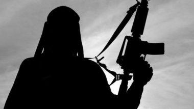 अफ्रीका: बुर्किना फासो में आतंकवादी हमला, 35 लोगों की मौत, 80 जिहादी मारे गए