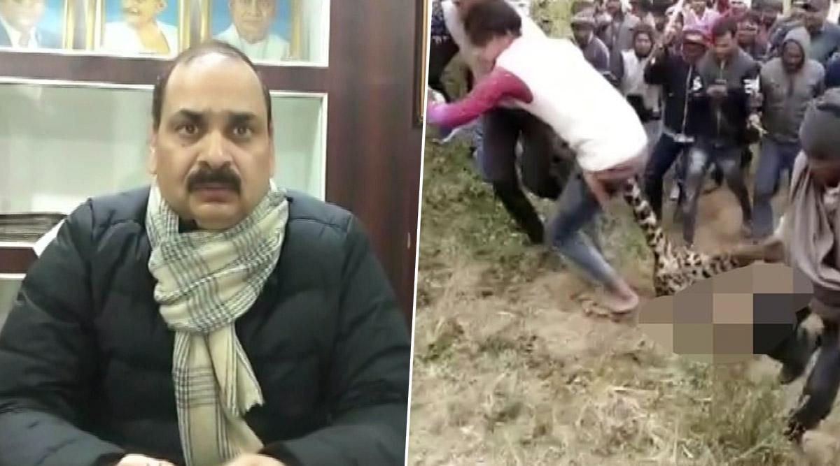 बिजनौर: ग्रामीणों ने आदमखोर तेंदुए को मारी गोली, स्कुल के लड़के को बनाया था शिकार