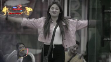 Bigg Boss 13 Episode 68 Sneak Peek 04 | 2 Jan 2020: Mahira Sharma ने  Rashami Desai को कहा 'आंटी'