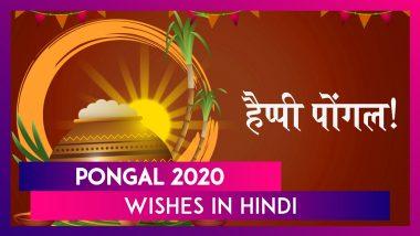 Pongal 2020 Wishes In Hindi: पोंगल पर रिश्तेदारों और दोस्तों को भेजने के लिए Messages, SMS, Quotes