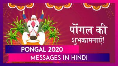 Pongal 2020 Messages In Hindi: दोस्तों, रिश्तेदारों को भेजने के लिए SMS, Quotes, Images, Greetings