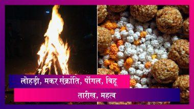 Lohri, Makar Sankranti, Pongal, Bihu 2020: जानें तारीख, शुभ मुहूर्त, महत्व