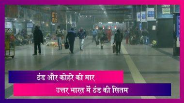 Cold wave- ठंड और कोहरे ने उत्तर भारत की रफ्तार रोकी, सड़क, ट्रेन और हवाई यातायात प्रभावित