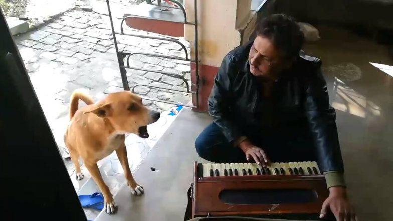 एक शख्स के साथ कुत्ते ने गाया रानू मंडल का 'तेरी मेरी कहानी' गाना, वीडियो हुआ वायरल, आप भी देखें