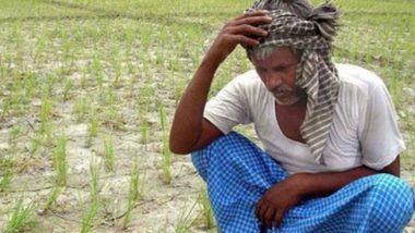 महाराष्ट्र: नेता जब राज्य में सत्ता के लिए कर रहे थे दंगल, तब 300 किसानों ने की आत्महत्या
