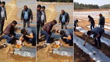 झारखंड: क्रिकेटर धोनी बने किसान, कर रहे तरबूज, पपीते की खेती