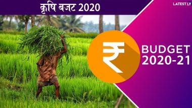 Agriculture Budget 2020: वित्त मंत्री निर्मला सीतारमण का बड़ा ऐलान, 16 सूत्रीय फॉर्मूले के तहत किसानों को मिलेगा फायदा