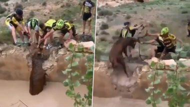 पानी में गिरा बारहसिंहा, साइकिलिस्टों ने जोखिम उठाकर ऐसे बचाई उसकी जान, देखें हिरण के रेस्क्यू का वीडियो