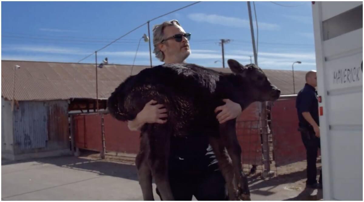 ऑस्कर विनर अभिनेता वॉकीन फीनिक्स ने बचाई गाय और 3 दिन के बछड़े की जान, देंखे वीडियो