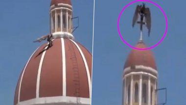 Fact Check: इटली में COVID-19 के कहर के बीच चर्च पर दिखा डरावना पक्षी, जानिए क्या है इस फेक वायरल वीडियो की सच्चाई