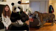 Google 3D Animals: क्वॉरेंटाइन के दौरान बोर होने से बचाएंगे ये गूगल 3 डी एनिमल्स, अपने बच्चों को खुश करने के लिए Tiger, Giant Panda, Lion का दिखाएं मस्ती भरा जादू