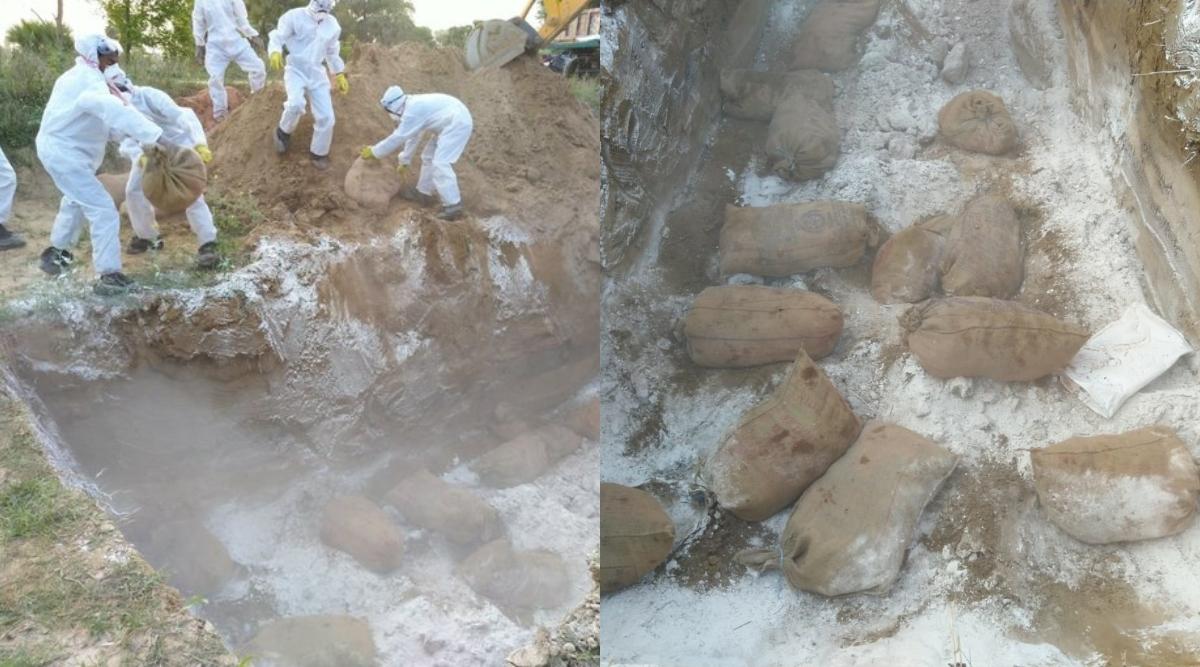 Coronavirus के प्रकोप के बीच बिहार में Bird Flu से दहशत, पशुपालन विभाग ने सैकड़ों मुर्गियों को मारकर दफनाया