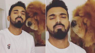 लॉकडाउन के दौरान अपने पेट डॉग सिंबा के साथ समय बिता रहे हैं के एल राहुल, देखें वीडियो