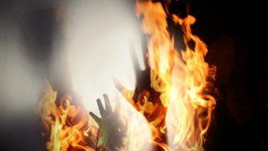 Telangana Horror: घरेलू काम करने वाली 13 वर्षीय दलित लड़की द्वारा रेप के प्रयास का विरोध करने पर जलाकर मारने की कोशिश