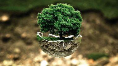 World Earth Day-2020:  जानें कैसे हुई इसकी शुरुआत? पृथ्वी-संरक्षा में आप भी बनें भागीदार!